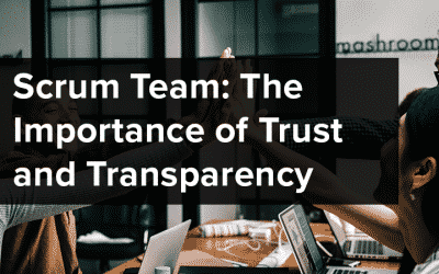 Scrum Team: The Importance of Trust and Transparency