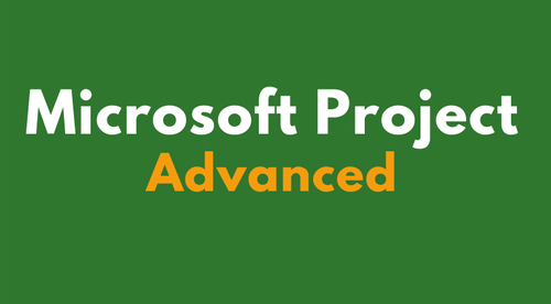 Microsoft Project Advanced Online Training Course